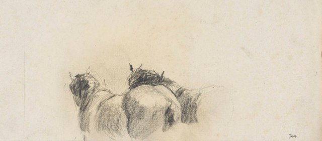 An image of recto: Backs of Clydesdales verso: Male profile (twice)