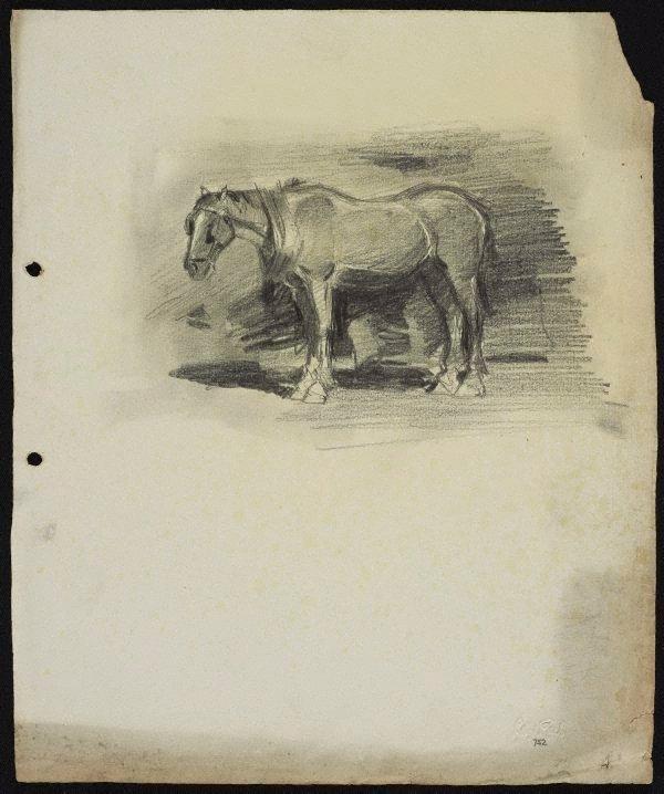 An image of Cart horse waiting