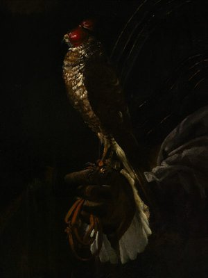 Alternate image of Portrait of a gentleman with a falcon by Nicolò dell'Abate