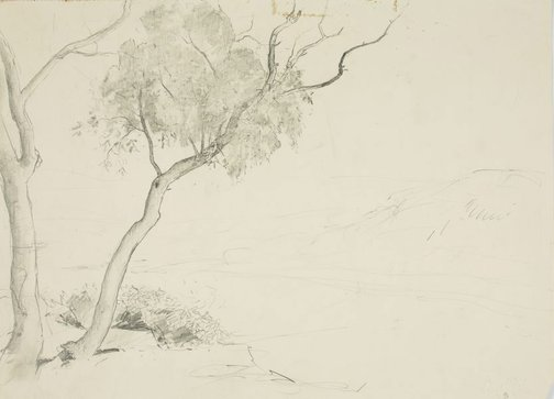 An image of Trees beside river by Lloyd Rees
