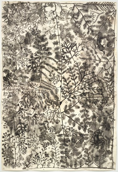 An image of Punu Ngura (Country with trees) 2 by Peter Mungkuri