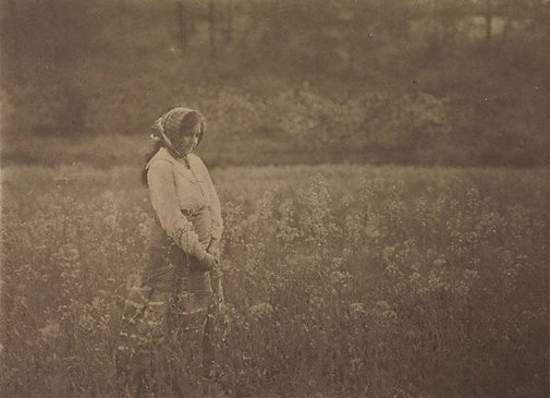 An image of A field of memories by Frederick A Joyner