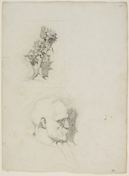 An image of Father, and a study of flowers in a vase by Lloyd Rees