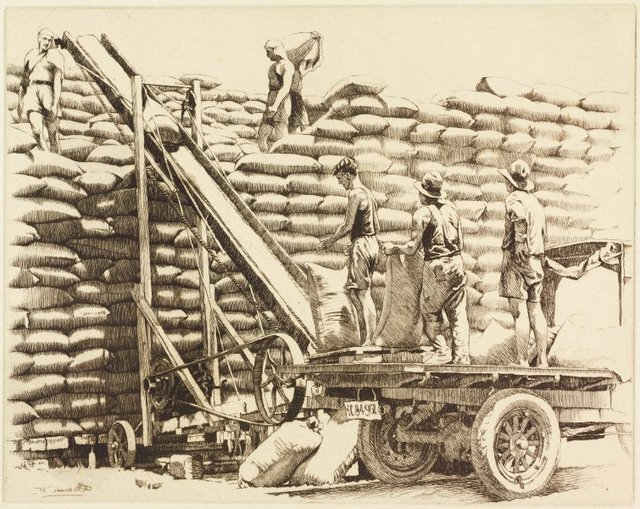 An image of Stacking wheat, New South Wales