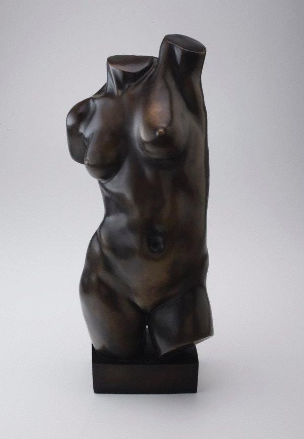 An image of Self-torso