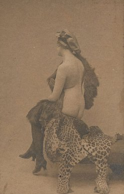 An image of Untitled (nude woman on leopard skin) by Francis J Mortimer