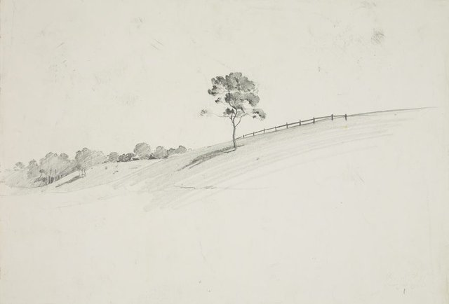 An image of Landscape with tree on a slope