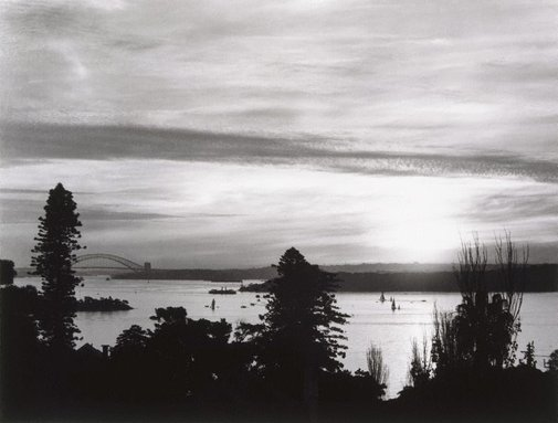 An image of Sydney Harbour from Vaucluse by David Moore