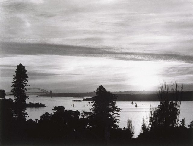 An image of Sydney Harbour from Vaucluse