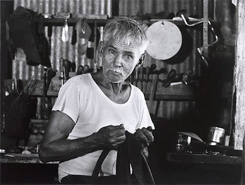 An image of Saddler, Wave Hill Cattle Station, Northern Territory by Axel Poignant