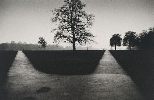 An image of Hampstead Heath, London by Lewis Morley