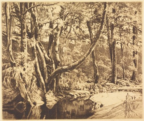 An image of (Forest scene with creek) by E Warner