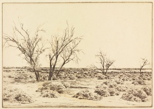 An image of (Salt lakes, Victoria) by E Warner