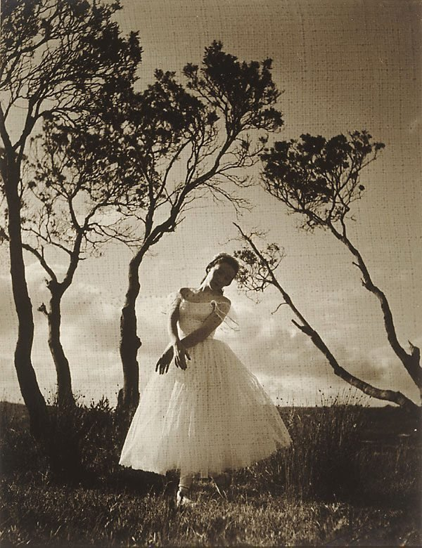 An image of Sylphides