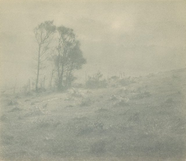 An image of Drifting mist