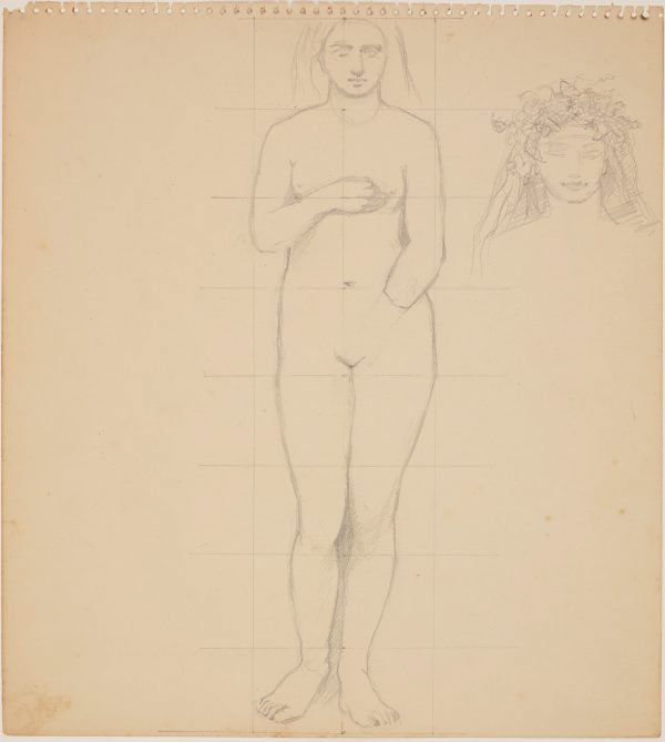 An image of Studies for 'The judgement of Paris' (Study for female figure)