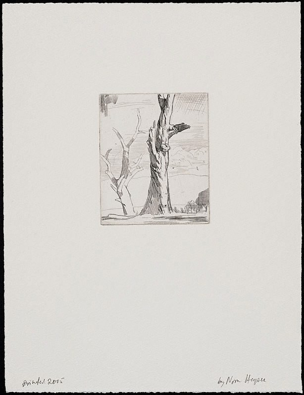 An image of Tree studies