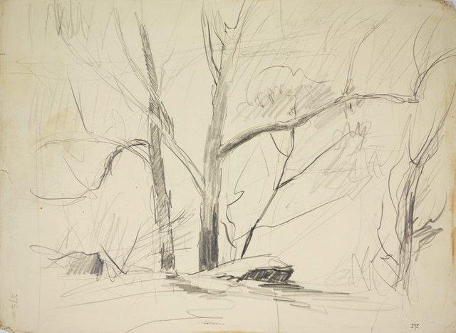 An image of recto: A bush sketch verso: A guesthouse