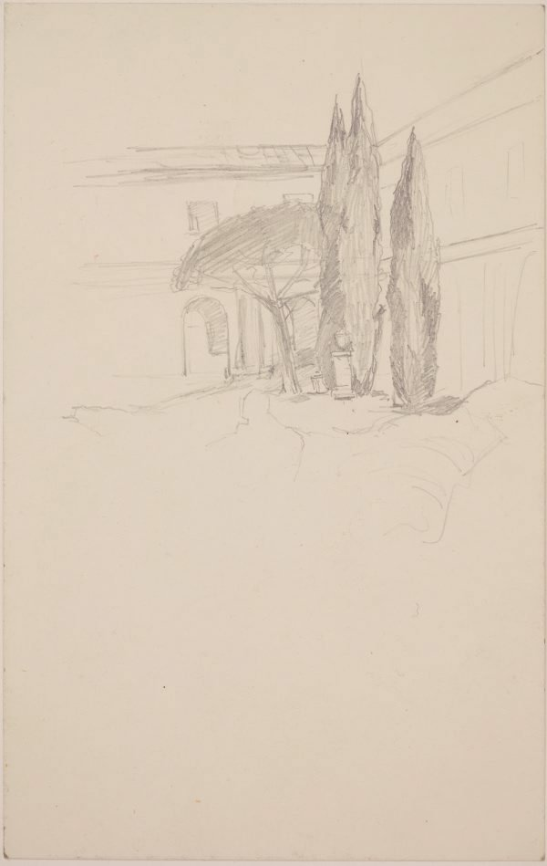 An image of (Study of Pines)