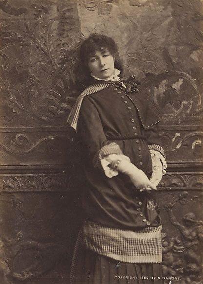 An image of Untitled (portrait of Sarah Bernhardt, New York)