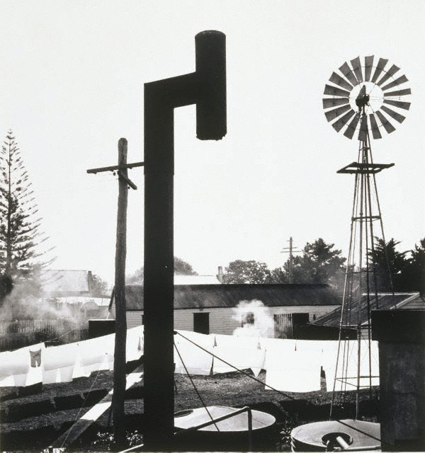 An image of Backyard, Forster
