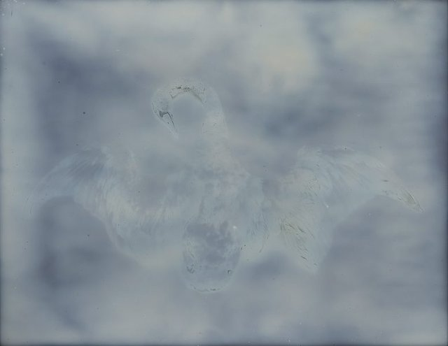 An image of from the series My ghost