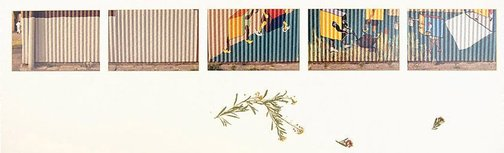 An image of Untitled (Painted mural along corrugated wall.Yarraville sugar refinery) by Merryle A Johnson