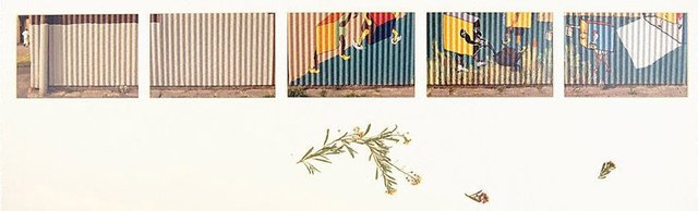 An image of Untitled (Painted mural along corrugated wall.Yarraville sugar refinery)
