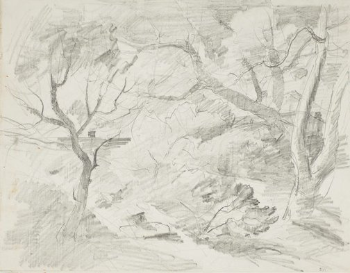 An image of recto: Bush view verso: Bare trees and rooftop by Lloyd Rees