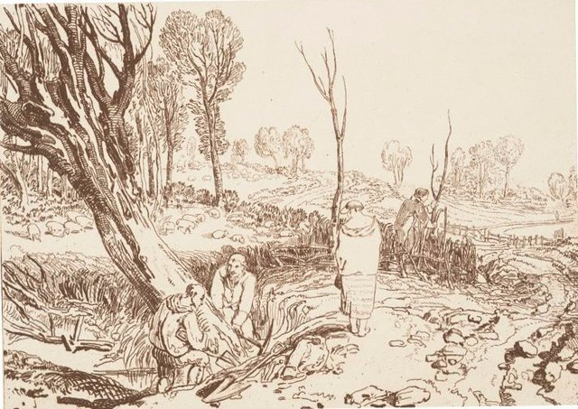 An image of Hedging and Ditching