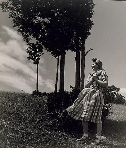An image of Bunty by trees