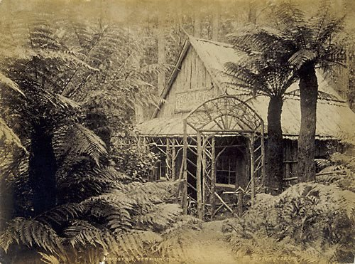 An image of Forest hut, Mount Wellington
