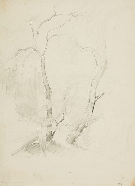 An image of recto: Two trees verso: Saddleback with Werri lagoon by Lloyd Rees