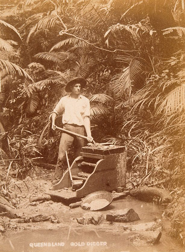 An image of Gold digging near Cairns
