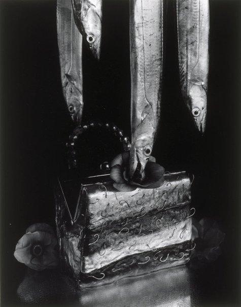 An image of Mackerel, hairtail, and handbag by Michiko Kon