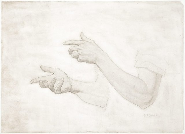An image of (Study of male hands & arms)