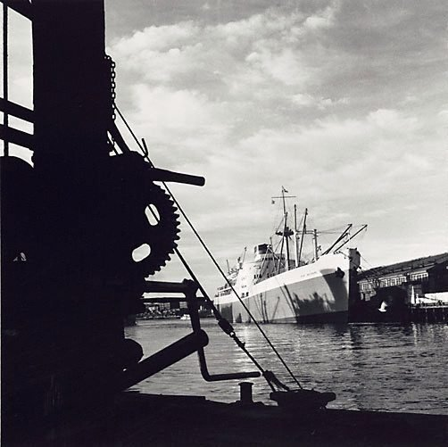 An image of 'Port Brisbane', Pyrmont by David Moore