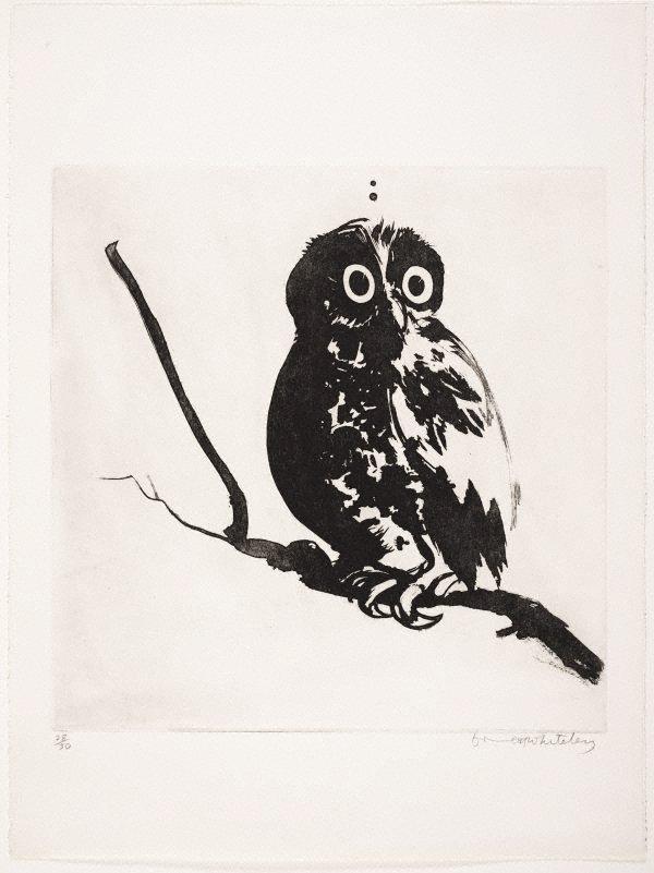 Startled (owl), (1984) by Brett Whiteley