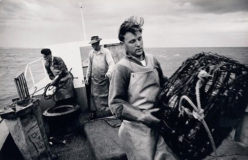 An image of Cray fishermen, Lancelin W.A. by David Moore