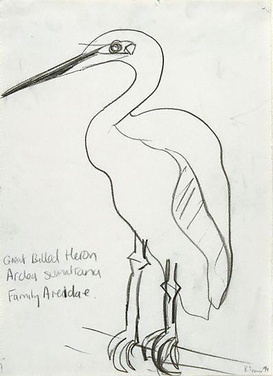 An image of Untitled (Great Billed Heron) by Kathy Temin