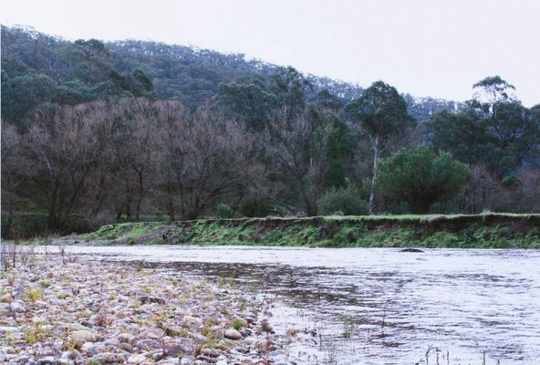 Alternate image of 2. Near Corryong by Bonita Ely