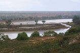An image of 8. Near Swan Reach, South Australia by Bonita Ely