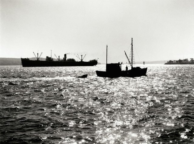 An image of Fishing trawler, Sydney Harbour