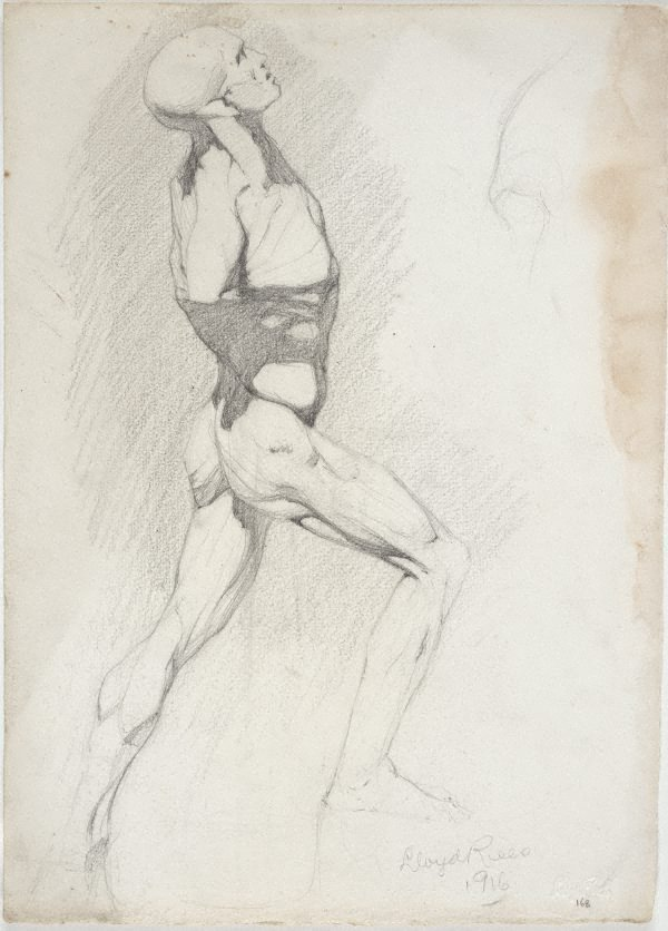 An image of Écorché - study of male figure