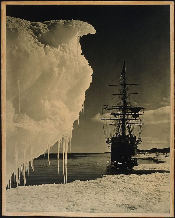 An image of The Terra Nova at the Icefoot Antarctica