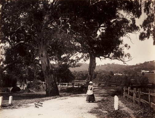 An image of Mitcham by Samuel White Sweet