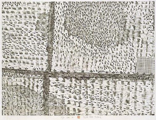 An image of Seedling field by Xu Bing