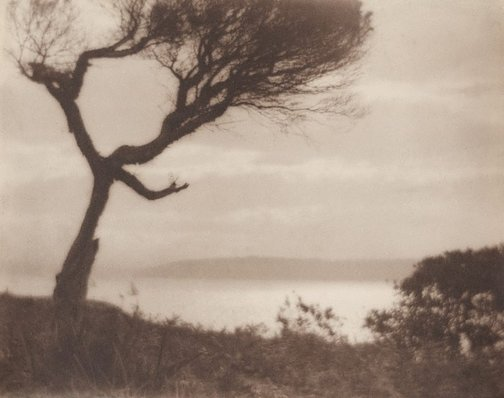 An image of The gleam (Bottle and Glass Pt., Port Jackson) by Norman C Deck