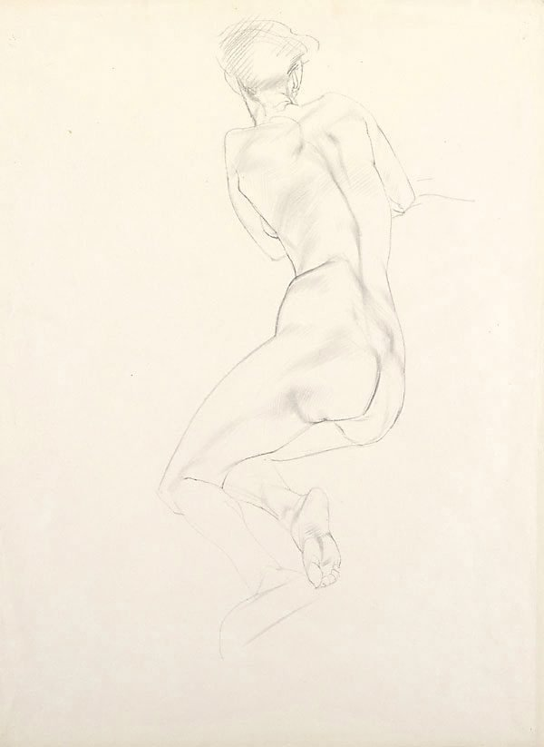 An image of Nude study - woman, back view