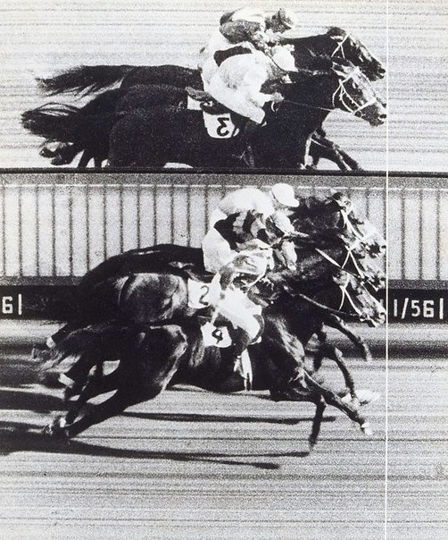 An image of Triple dead heat by Athol Shmith